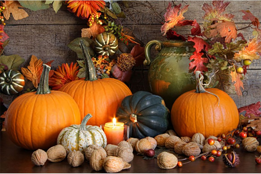 YOUR PUMPKIN: CARVING, KITCHEN, SOWING!
