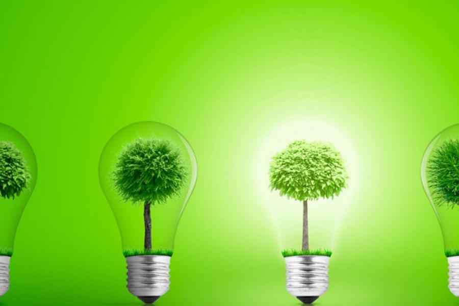 ENERGÍA DE LAS PLANTAS, ¿ES POSIBLE?